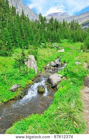 Mountain Stream On A High Alpine Trail In Glacier National Park