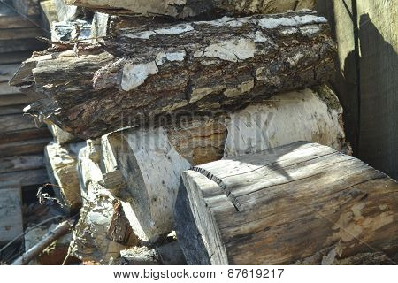 Birch Firewood Logs Stacked In The Slipway