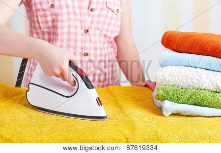 Housewife  Woman With Iron Engaged In Domestic Work
