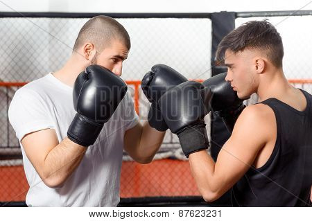 Boxers fight in a sparring