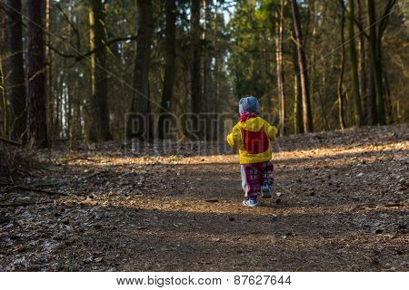 Toddler Child Walking By Path In Forest