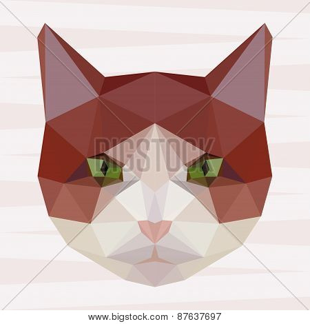Abstract Polygonal Geometric Cat Portrait Background
