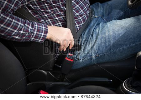 Closeup Of Male Driver Fastens Seat Belt