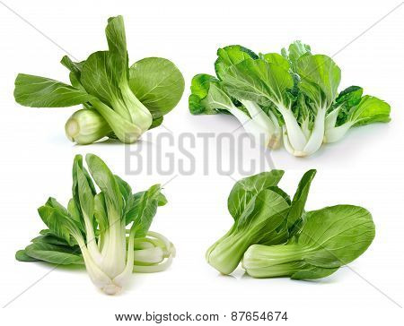 Bok Choy (chinese Cabbage Or Qing Geng Cai) Isolated On White Background