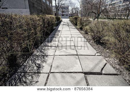 Old Convrete Pathway