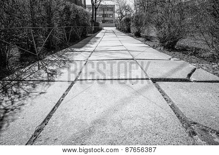 Old Concrete Pathway