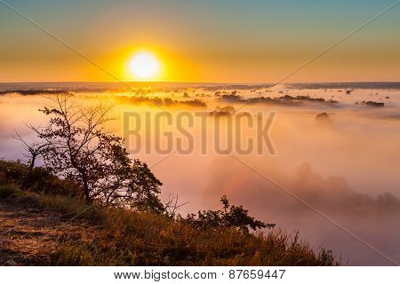 Misty dawn over Valley and the forest