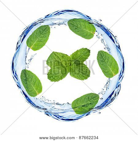 Green leaves and water splashing shaped as round frame, isolated on white