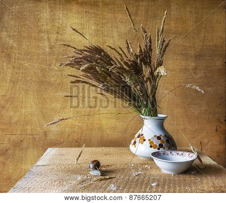 Still Life With Bouquet Dried Wild Grasses Worm
