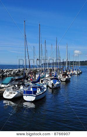 Sailing boats at marina