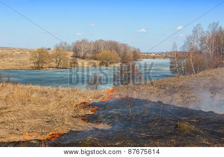 Burning Last Year's Dry Grass In The Spring On The River Bank