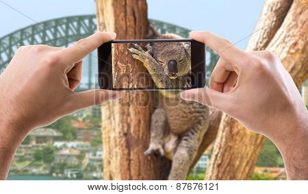 Hand holding Smartphone in Australia