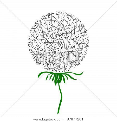 Dandelion in the form of a circle of random lines