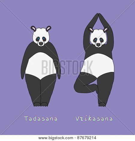 Illustration Of Two Yoga Panda Bears
