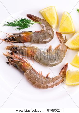 Raw shrimps on white plate.