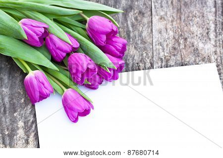 Violet Tulips On The Oak Brawn Table With White Sheet Of Paper