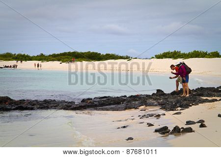 Unidentified tourists taking photos of crabs in beautiful deserted beach, Santa Cruz island, Galapag