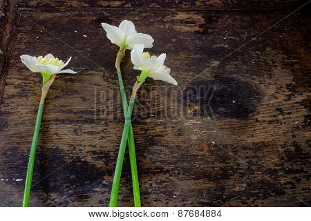 Three Bunch Of White Narcissus On Wooden Table