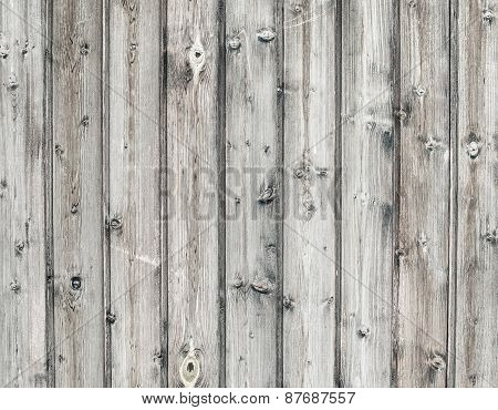 Old Rustic Wood Beige Texture. Old Background.