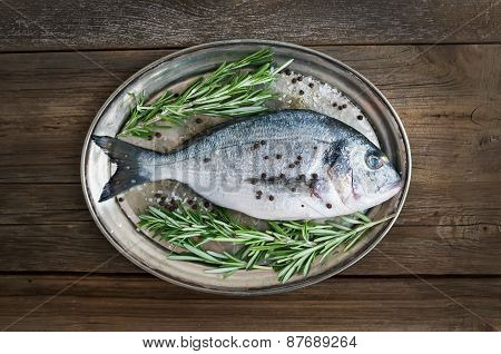 Fresh Sea Fish (dorado) On A Metal Dish With Rosemary And Spices Ready For Cooking