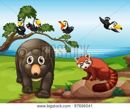 Many animals together by the lake