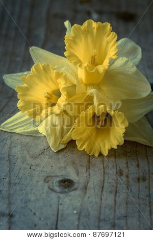 Narcissus Bouquet On Wooden Table
