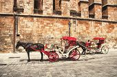 foto of carriage horse  - A horse carriage near an old building wall of The Cathedral of Santa Maria of Palma - JPG