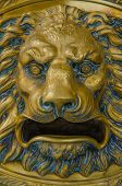 picture of lions-head  - Golden lion head roaring with a fierce expression - JPG