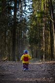 pic of children walking  - Toddler child walking by path in forest - JPG