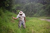 picture of vaquero  - Costa Rican ranch hand with a machete - JPG