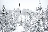 image of coniferous forest  - Old cable ski lift with no passangers going across the coniferous forest in  - JPG