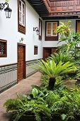image of world-famous  - Tenerife Canary Islands Spain  - JPG