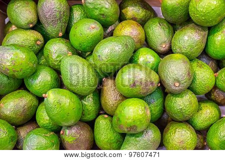 Avocados for sale at a market
