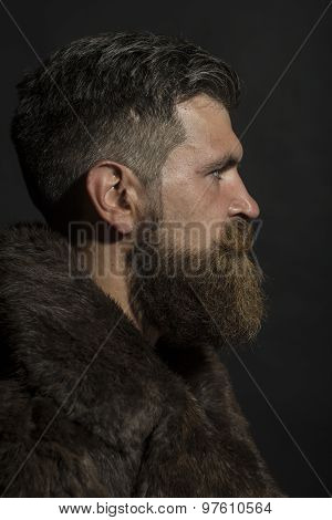 Profile Of Guy In Fur Coat