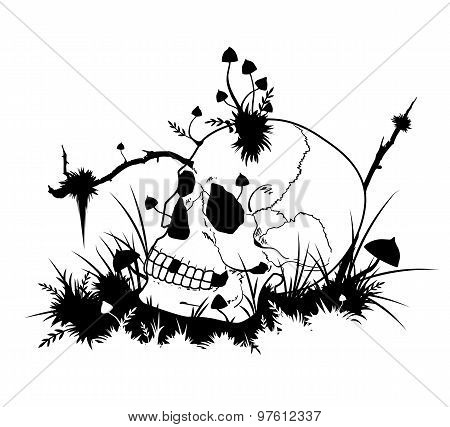 Halloween Illustration With Skull And Mushrooms