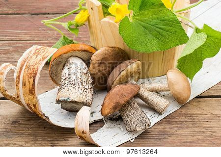 A Heap Of Wild Mushrooms And Flowers Tladianta In A Wooden Bucket