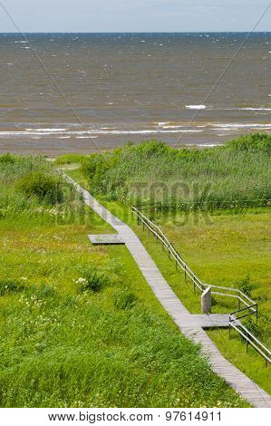 Overlook On Seaward Wooden Boardwalk