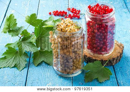 White And Red Currants In Glass Jars