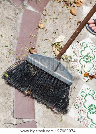 Broom Sweeps Leaf Litter