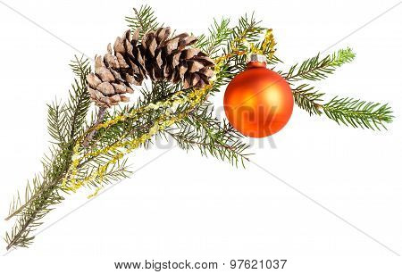 Branch Of Spruce Tree With Cone And Orange Ball