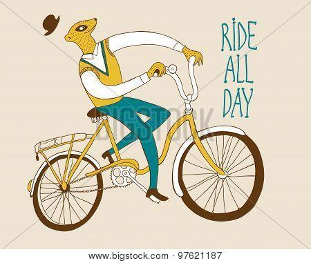 Vintage Meerkat Cyclist