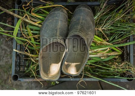 Retro Dirty Rubber Boots