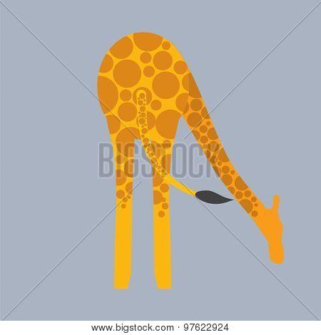 Giraffe Bottom.