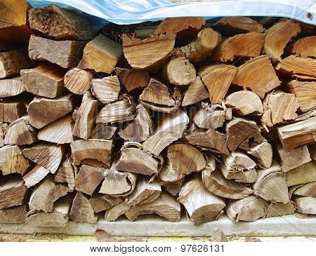 Cut logs for wood burning