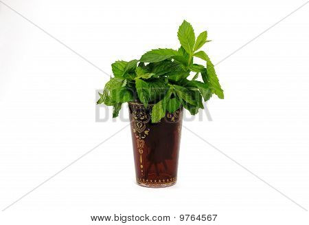 Nana mint in maroc tea glass