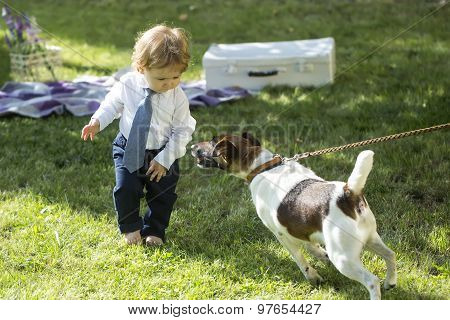 Baby Boy Playing With Jack Russes Terrier