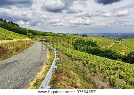 Road Of Wine, Beaujolais, France