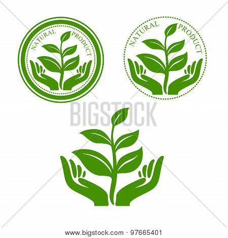 Natural product icon with hands and plant
