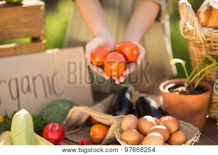 Close up view of woman hands showing three tomatoes