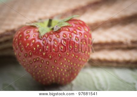 Strawberry And Wafers